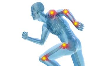Conceptual human pain anatomy
